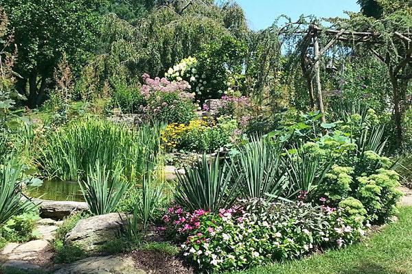 umills garden pond