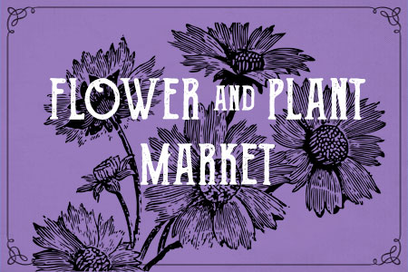 flower and plant market