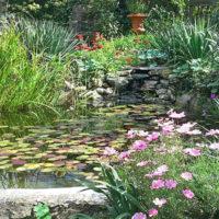 umills garden